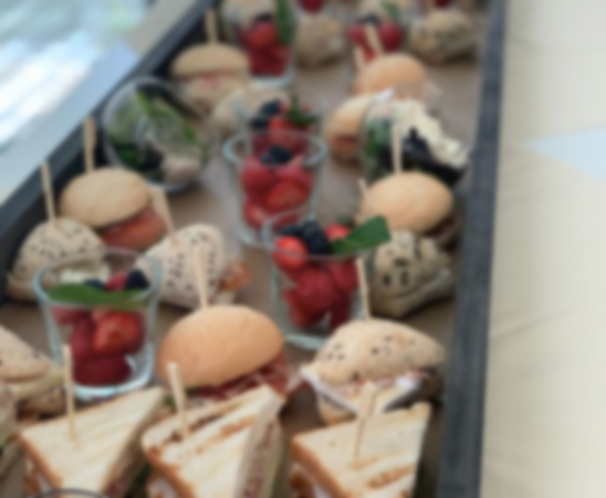 catering_Posterholt_Vijo Cuisine - fingerfood catering_2.jpg