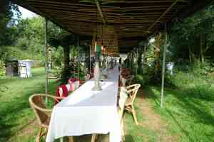 foto 3 van project Jubileum in de kas