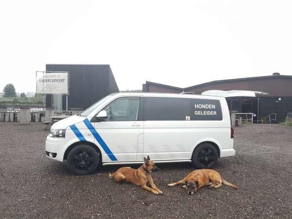 beveiliging_Velserbroek_Weisz security_5.jpg