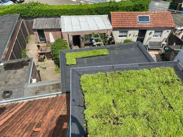 dakdekker_Den Bosch_Van den Bogaert Isolatie en daktechniek_9.jpg