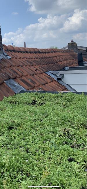 foto 3 van project Groene daken,Sedun cassettes