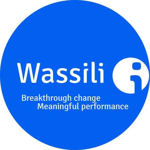 coaching_Amsterdam_Wassili Life & Business Coach. Training & Organisatie ontwikkeling._2.jpg