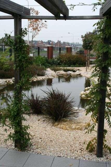 hovenier_Dordrecht_Gerard van Holstein tuinarchitectuur _7.jpg
