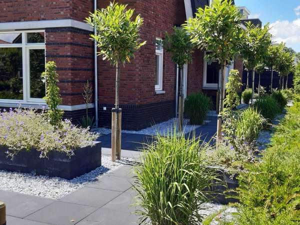 hovenier_Dordrecht_Gerard van Holstein tuinarchitectuur _13.jpg