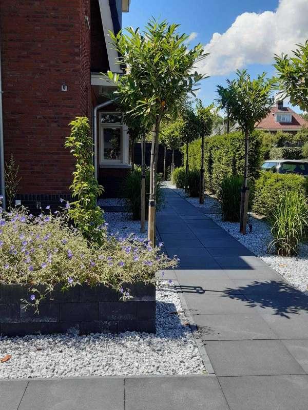 hovenier_Dordrecht_Gerard van Holstein tuinarchitectuur _5.jpg