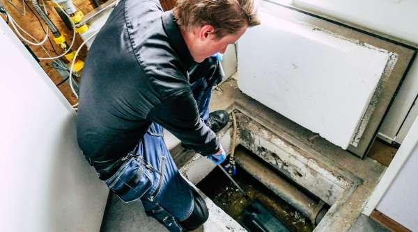 ongediertebestrijder_Genemuiden_Verhoek Hygienic_7.jpg