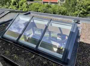 foto 1 van project Schiedam Sedum dak met lichtstraat