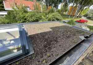 foto 2 van project Schiedam Sedum dak met lichtstraat