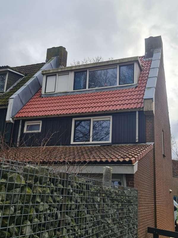 dakdekker_Rotterdam_Dakdekker Brummer_3.jpg