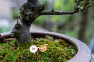 foto 2 van project Bruidsreportage Anouk en Jeroen