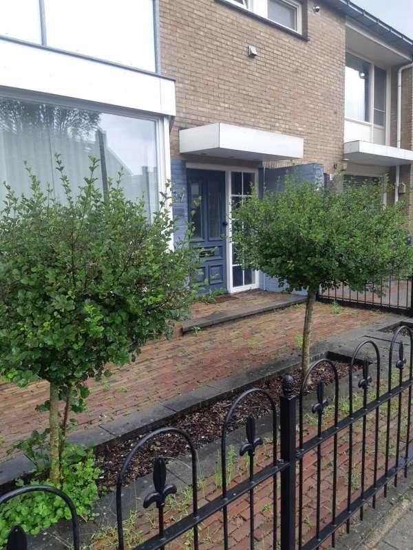 schilder_Den Bosch_arend allround_19.jpg