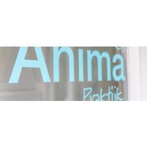 Anima praktijk voor speltherapie en EMDR.jpg