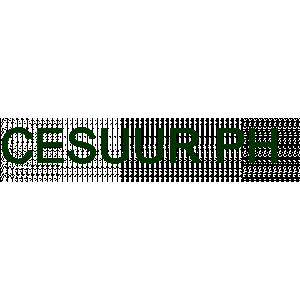 Cesuur PH voor psychologische zorg en medische hypnotherapie.jpg
