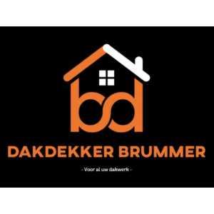 dakdekker_Rotterdam_Dakdekker Brummer_1.jpg