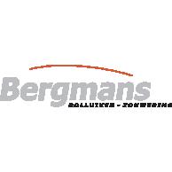 Bergmans Rolluiken.jpg