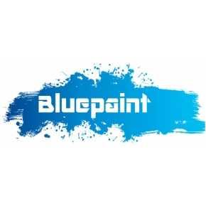 Bluepaint Schilderwerken.jpg