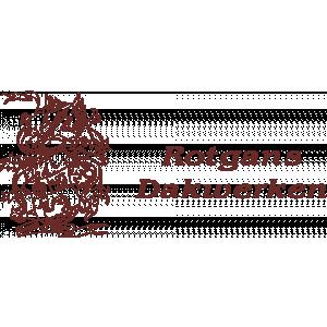 Rotgans Dakwerken.jpg