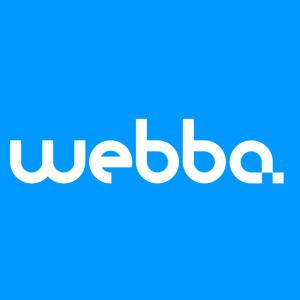 webdesign_Emmen_Webba - Online vooruit._1.jpg