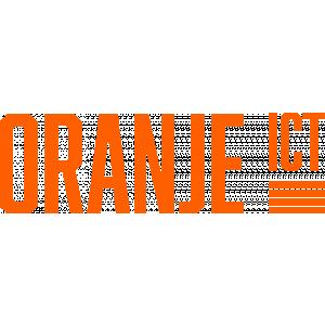 Oranje ICT.jpg