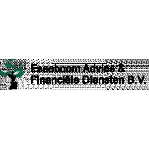 Esseboom Advies & Financiële Diensten BV.jpg