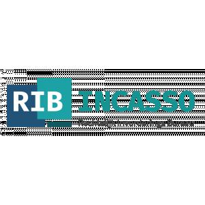 RIB Incasso B.V..jpg