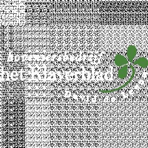 Hoveniersbedrijf Het Klaverblad David De Leeuw.jpg
