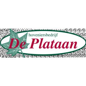 Hoveniersbedrijf De Plataan B.V..jpg