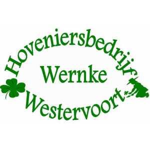 Hoveniersbedrijf Wernke.jpg