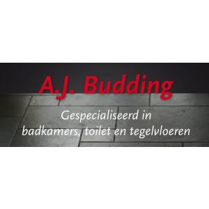 A.J. Budding.jpg