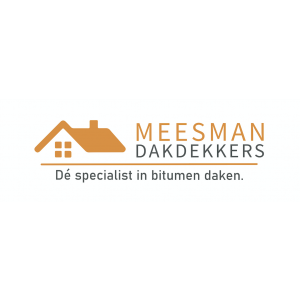 dakdekker_Den Bosch_Meesman Dakdekkers_1.jpg