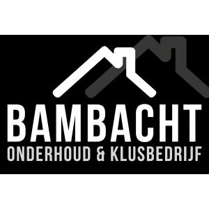 dakdekker_Den Bosch_Onderhoud & Klusbedrijf Bambracht_1.jpg